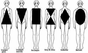 Conoce los siete tipos de cuerpos y sus cualidades
