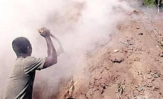 Los haitianos incendian los bosques