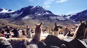 Los nevados andinos parecen estar desapareciendo a un avanzado ritmo.