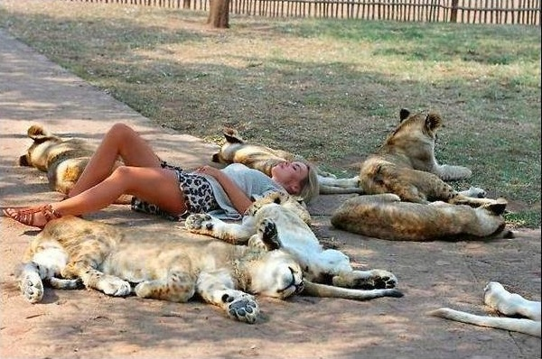 dormir-la-siesta-protegida