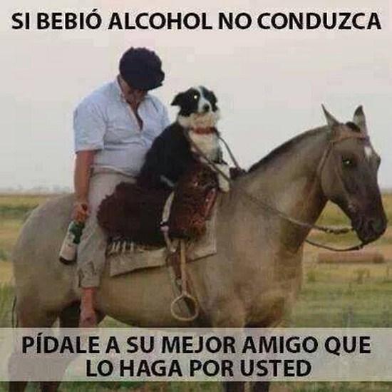 si-bebio-tomo-alcohol-no-conduzca-imagenes_graciosas_para_facebook