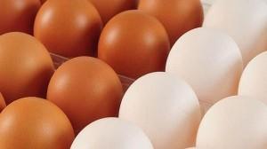No hay diferencias nutricinales entre los huevos blancos y los huevos marrones
