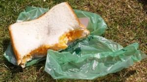sandwwich